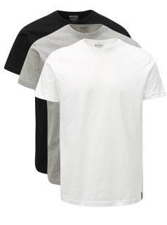 Sada tří pánských triček s krátkým rukávem NUGGET Scale