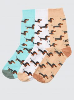 Sada tří párů vzorovaných ponožek v bílé a hnědé barvě Trendyol